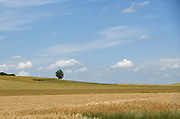 Loire Valley, Near Orleans, France