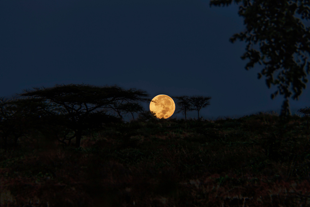 View of full moon in clear sky