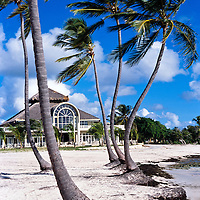 Beach and Palm Trees of Punta Cana Resort, Dominican Republic