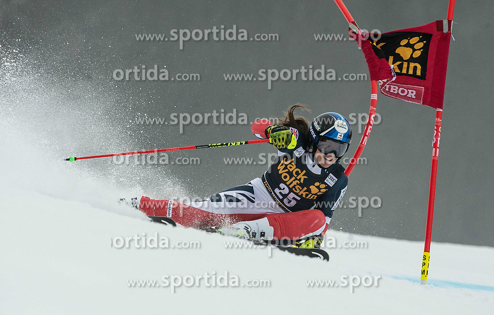 TILLEY Alex of Great Britain competes during the 6th Ladies'  GiantSlalom at 55th Golden Fox - Maribor of Audi FIS Ski World Cup 2018/19, on February 1, 2019 in Pohorje, Maribor, Slovenia. Photo by Vid Ponikvar / Sportida