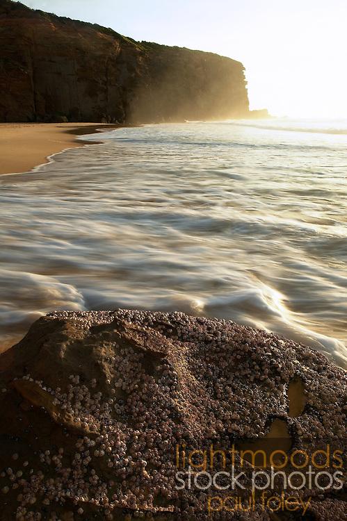 Rocks,Waves,Cliff, Redhead Beach