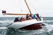 Vitesse sailing in the Opera House Cup.