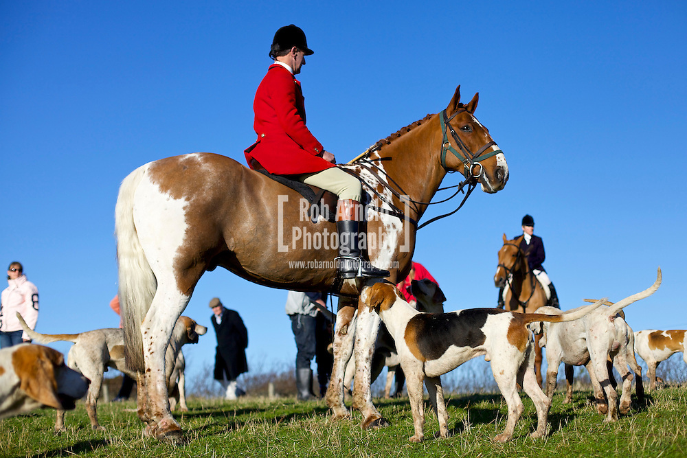 Carisbrooke, Isle of Wight, 26/12/2013 - Members of the Isle of Wight Hunt gather for their boxing day meet. Photo by Rob Arnold