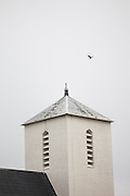 A bird flies over the steeple of the Vaeroy Church in Sorland, Vaeroy Island, Lofoten Islands, Norway.