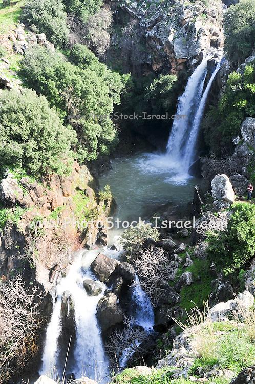 Israel, Golan Heights, Saar stream and waterfall nature reserve