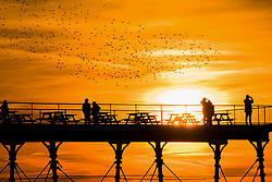 © London News Pictures. 25/03/2017. Aberystwyth, UK.  The sun sets behind a murmuration of starlings,  over Aberystwyth pier at the end of a  day of glorious sunshine and clear blue skies in Aberystwyth on the west wales coast, with temperatures in the high teens centigrade by the afternoon. Photo credit: Keith Morris/LNP