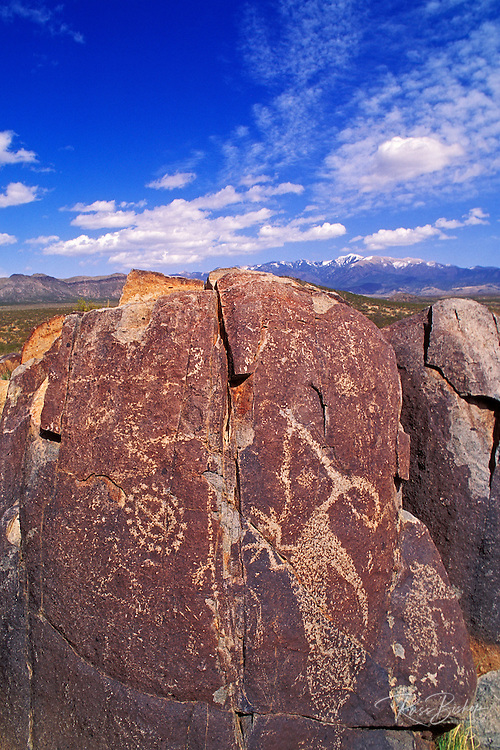 Mogollon petroglyphs under Sierra Blanca Peak, Three Rivers Petroglyph Site, New Mexico