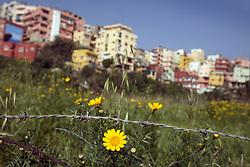A view of the predominantly Christian Corniche al-Nahr neighborhood in Beirut, Lebanon, March 23, 2006.