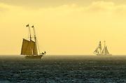 Toshiba Tall Ships Festival in Dana Point California