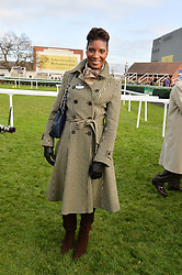 DENISE LEWIS at the 2013 Hennessy Gold Cup at Newbury Racecourse, Berkshire on 30th November 2013.