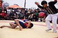 A wrestling match at the Buffalo Painting Festival near Phu Ly, Vietnam.