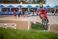#116 (AFREMOVA Natalia) RUS at Round 2 of the 2020 UCI BMX Supercross World Cup in Shepparton, Australia.