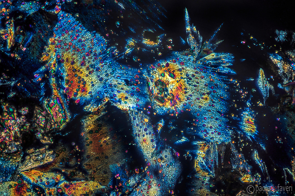 Very small crystals of aspirin drug viewed at the microscope in polarized light