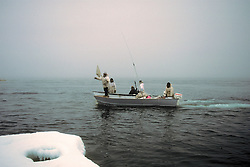 Bringing In Bowhead Whale For Harvest