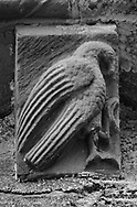 The Stone Bestiary - Black and white photo art print of Norman Romanesque exterior corbel no 62 - sculpture of a large bird of prey. The Norman Romanesque Church of St Mary and St David, Kilpeck Herefordshire, England. Built around 1140 .<br /> <br /> Visit our LANDSCAPE PHOTO ART PRINT COLLECTIONS for more wall art photos to browse https://funkystock.photoshelter.com/gallery-collection/Places-Landscape-Photo-art-Prints-by-Photographer-Paul-Williams/C00001WetsxVxNTo .<br /> <br /> By Photographer Paul E Williams
