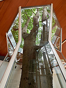 FREESPACE - 16th Venice Architecture Biennale. Canada Builds/Rebuilds a Pavilion in Venice.