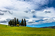 Tuscany scene with cypresses