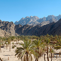 Wadi Feiran