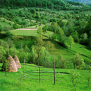 Typical pastoral landscape of the Maramures region near the village of Botiza, Romania. In the Romanian Carpathians, the agricultural landscape consists of a diverse mixture of small fields, meadows and orchards situated around villages, interspersed with forest and woodlands.