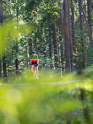Man riding racing bicycle on cycling tour in the Middle Black Forest, Germany