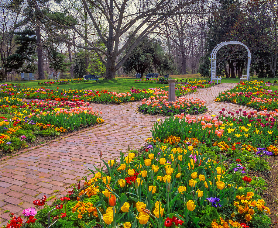 Brick walkway, sundial & arbor, tulips in bloom, Ginter Botanical Gardens, Richmond, VA