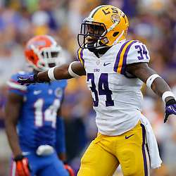 Oct 12, 2013; Baton Rouge, LA, USA; LSU Tigers safety Micah Eugene (34) celebrates after a defensive stop against the Florida Gators during the fourth quarter a game at Tiger Stadium. LSU defeated Florida 17-6. Mandatory Credit: Derick E. Hingle-USA TODAY Sports