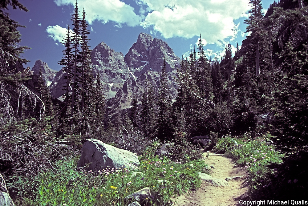 The backside of the Grand as seen from the Cascade Canyon trail on the way to Lake Solitude.  Grand Teton NP.  Wyoming.  USA.