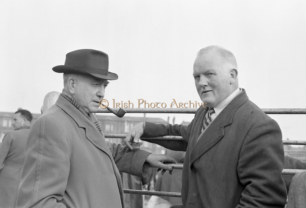Dublin Cattle Market. Co. Kildare farmers Dennis Nolan (left), Newbridge, and John Boland, Monasterevin..25.04.1962