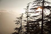 View from Mukteshwar village, Kumaon region, Himalaya, Uttarakhand, India