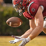 South Carolina Gamecocks player Hayden Hurst hauls in a catch during an SEC college football game at Williams-Brice Stadium in Columbia, S.C. ©Travis Bell Photography