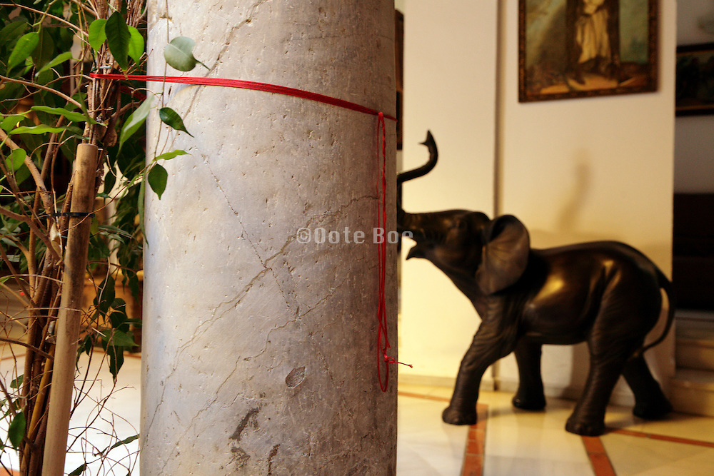 plant tied with a red string to a pillar