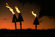 Tiki Torches<br />