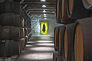 barrels with aging port sandeman port lodge vila nova de gaia porto portugal