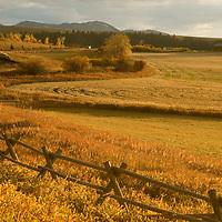 Jack leg fence by harvested wheat field below Gallatin Range, south of Bozeman Montana,