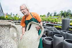 Male gardener arranging ceramic pots in greenhouse, Augsburg, Bavaria, Germany