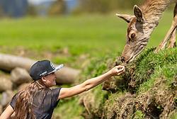 THEMENBILD - eine Jugendliche füttert eine Hirschkuh mit der Hand im Wildpark Ferleiten, aufgenommen am 29. April 2018 in Taxenbacher-Fusch, Österreich // a teenager feeds a female Roe Deer with the hand at the Wildlife Park, Taxenbacher-Fusch, Austria on 2018/04/29. EXPA Pictures © 2018, PhotoCredit: EXPA/ JFK
