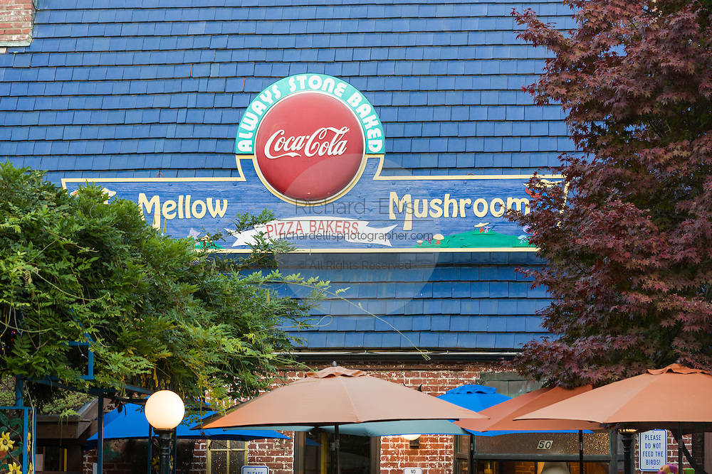 Mellow Mushroom pizza in the old 76 gas station on Broadway in Asheville, North Carolina.