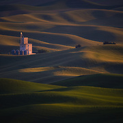 Even now, the Palouse is the world's leader in the production of soft white winter wheat. The combination of mild winters, wet springs and dry summers creates the ideal conditions for the crop.
