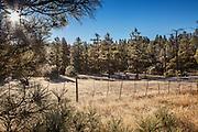 San Carlos Apache Indian Reservation in Arizona