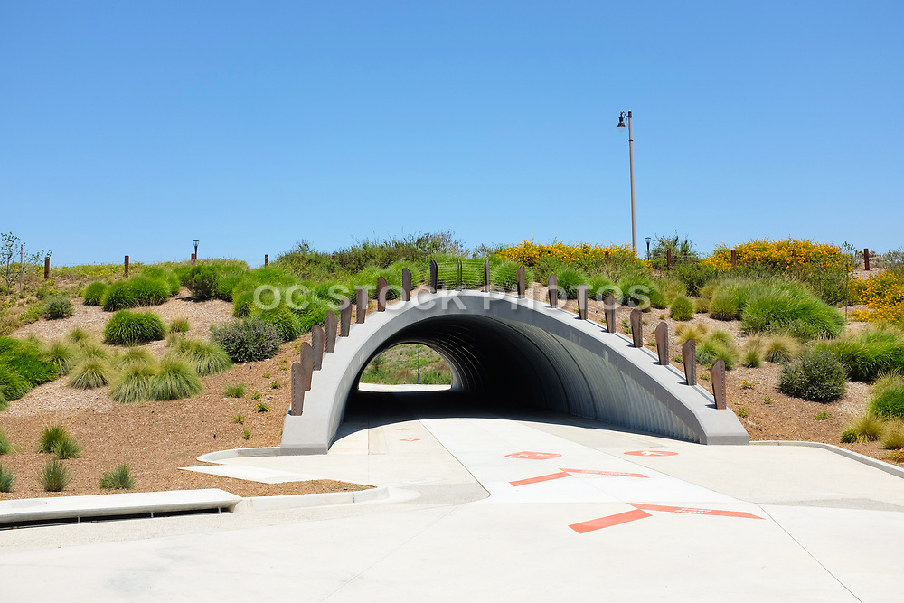 Pedestrian and Bike Trail and Tunnel at Cadence