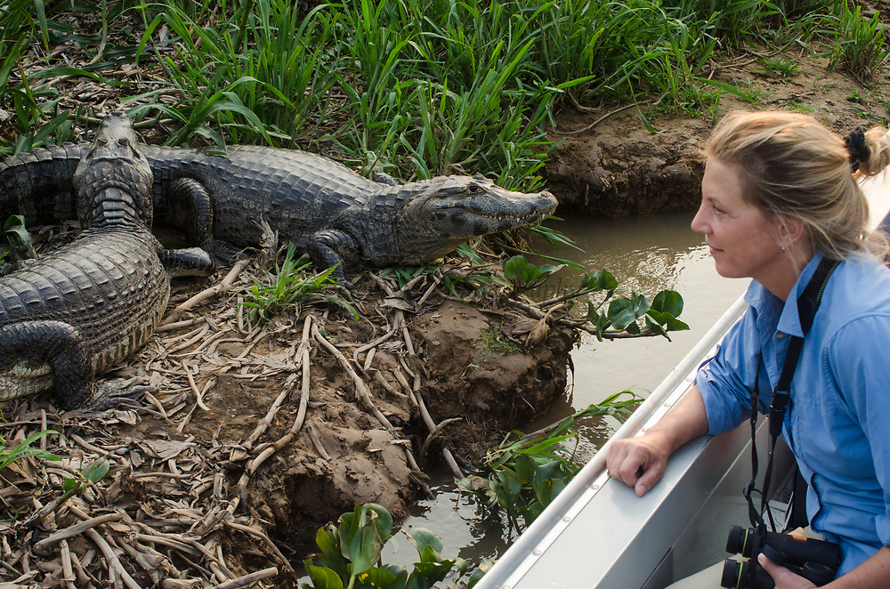 Tourism<br /> Northern Pantanal<br /> Mato Grosso<br /> Brazil