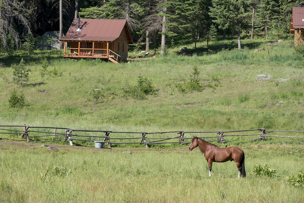 Horse and log cabin at the Minam River Lodge in Oregon's Wallowa Mountains.