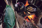 Live chiro worms (the larvae of longhorn beetles from the family Cerambycidae), in a frying pan with vegetable oil, comprise the lunch prepared by Marleni Real, 16, for her father and brother, in Koribeni, Peru.(Man Eating Bugs: The Art and Science of Eating Insects)