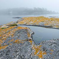 Foggy landscape in the Kanholmsfjärden.<br /> Stockholm Archipelago, Sweden