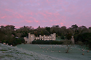 A February sunrise on a frosty morning at Caerhays Castle, St Austell, Cornwall, UK