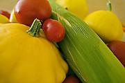 Assorted home-grown vegetables from a Tasmanian garden