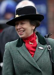 Princess Anne during St Patrick's Thursday of the 2017 Cheltenham Festival at Cheltenham Racecourse.