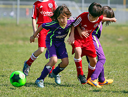 09 April 2016. Hammond, Louisiana.<br /> South Tangi Youth Soccer Association (STYSA), Chappapeela Sports Complex, 30th Annual Strawberry Cup,  <br /> New Orleans Jesters Youth Academy U9 team Green take on Louisiana Fire Cp Red. <br /> Jesters lose 0-6. <br /> Photo©; Charlie Varley/varleypix.com