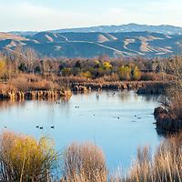 Hyatt Hidden Lakes Reserve