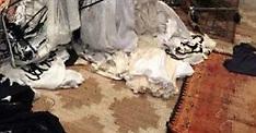 Amber Heard's trashed closet in $3million LA penthouse - 2015